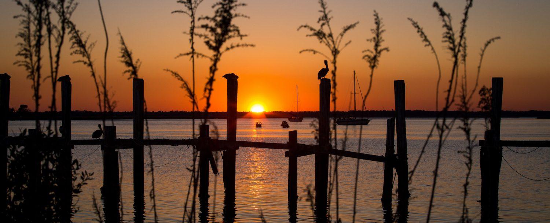 Pelican watching the sunset on a damaged dock at the Fernandina Beach Marina