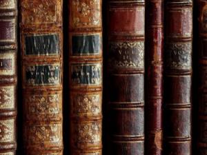 old books lined up on a shelf amelia island book festival