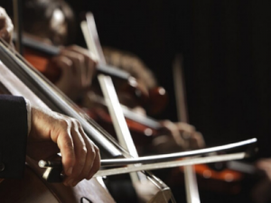 chamber music festival violins and cellos