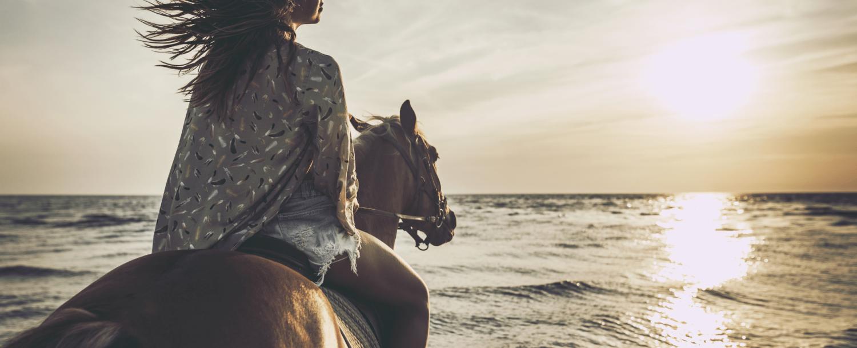 Horseback Riding on the Beach Outdoor Activities